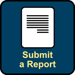 Submit a report